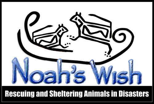 Noah's Wish -- A great place to donate!