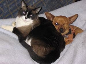 Me & My Feline Sis